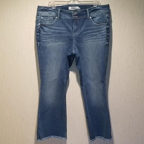 Torrid boot leg jean